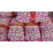 Китай Белый Чеснок 20 кг сетка сумка 4,5 см
