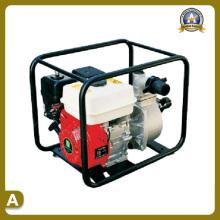 Machines de jardin de pompe à eau (TS-5030P)