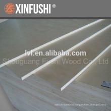 Birch plywood for America market