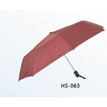 Automatic Open and Close Fold Umbrella (HS-063)