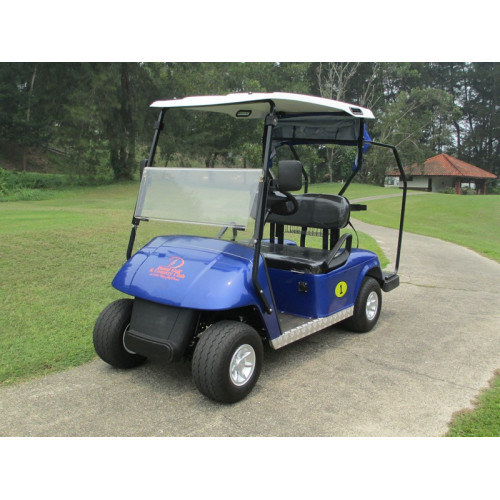 2 person mini gas power RXV golfbilar till salu