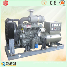 50kw Brushless Diesel Home Generating Set with Brand Engine