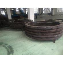 Anillos forjados para rodamientos de gran diámetro
