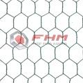 Vinyl Coated PVC Hexagonal Wire Netting for Garden