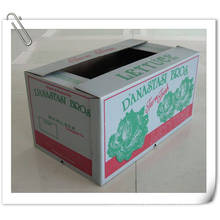 Corrugated Box/Printed Box with Anti-Water Function
