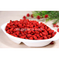 Non GMO Superfood Eu Standard Goji Berries