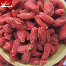 2017 new harvest goji berry(dried fruits malaysia)