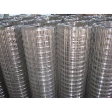 Malla de alambre soldada de hierro galvanizado