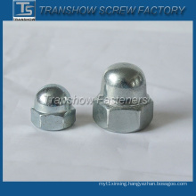 Galvanized Steel Hex Dome Head Cap Nut (DIN1587)