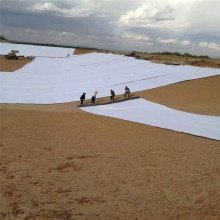 ASTM Bentonite Waterproof Blanket Geosynthetic Barrier