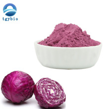 Pure Red Cabbage /Purple Cabbage Extract Powder Anthocyanins