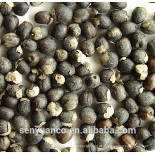 Fructus Viticis Extract