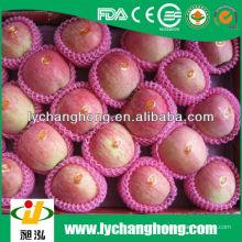 Свежие фрукты ягода fuji для продажи с самой низкой ценой