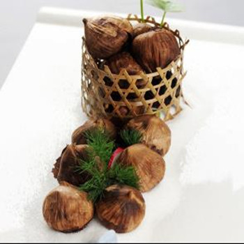 single black garlic (19)