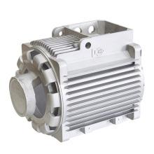 Carcaça do motor do molde de carcaça de alumínio