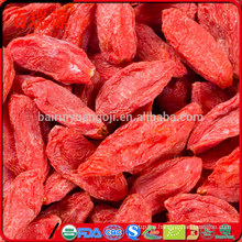 Where can i find goji berries goji beans chinese wolfberry