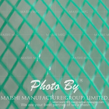 Green Plastic Grass Protection Netting