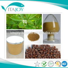 Extracto de semilla de fenogreco de alta calidad 4-hidroxiisoleucina 1% -20%
