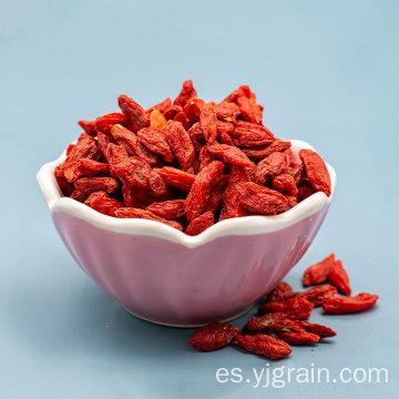 Té perfumado de la salud del níspero de los productos agrícolas al por mayor