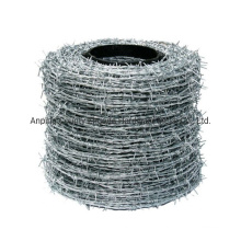 Made in China Electro Galvanized Barbed Wire Factory in Amazon