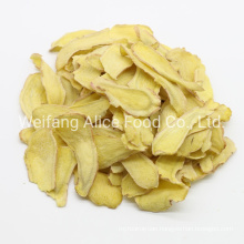 China Healthy Vegetable Snacks Cheap Price Export Standard Wholesale Fried VF Ginger Chips
