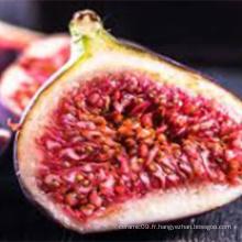 Poudre de jus de figue pure de fruits originaux nouvellement récoltés