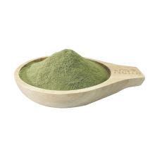 Polvo de espinaca orgánica pura para suplemento alimenticio