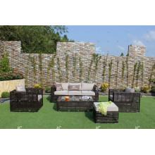 Colección del águila - El sofá sintético vendedor caliente de la rota de la venta caliente fijó los muebles al aire libre del jardín