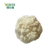 New Chinese  crop Fresh Cauliflower all year round exported to HK, Malaysia ,Indonesia