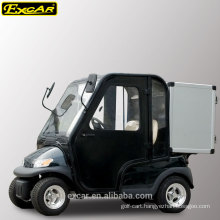 2 seater Electric golf cart with cabin doors and aluminum storage box