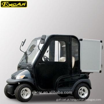 Carrinho de golfe elétrico de 2 lugares com portas de cabine e caixa de armazenamento de alumínio