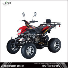 Build Your Own ATV Kits 250cc EEC on Road Quad