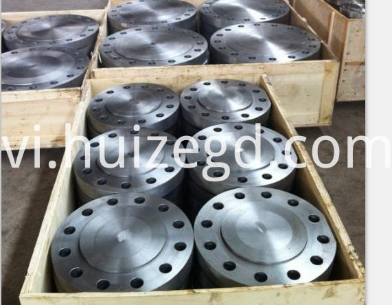 Flange Packing 2