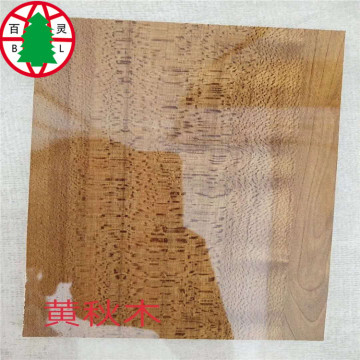 4x8 High glossy melamine Commercial Plywood
