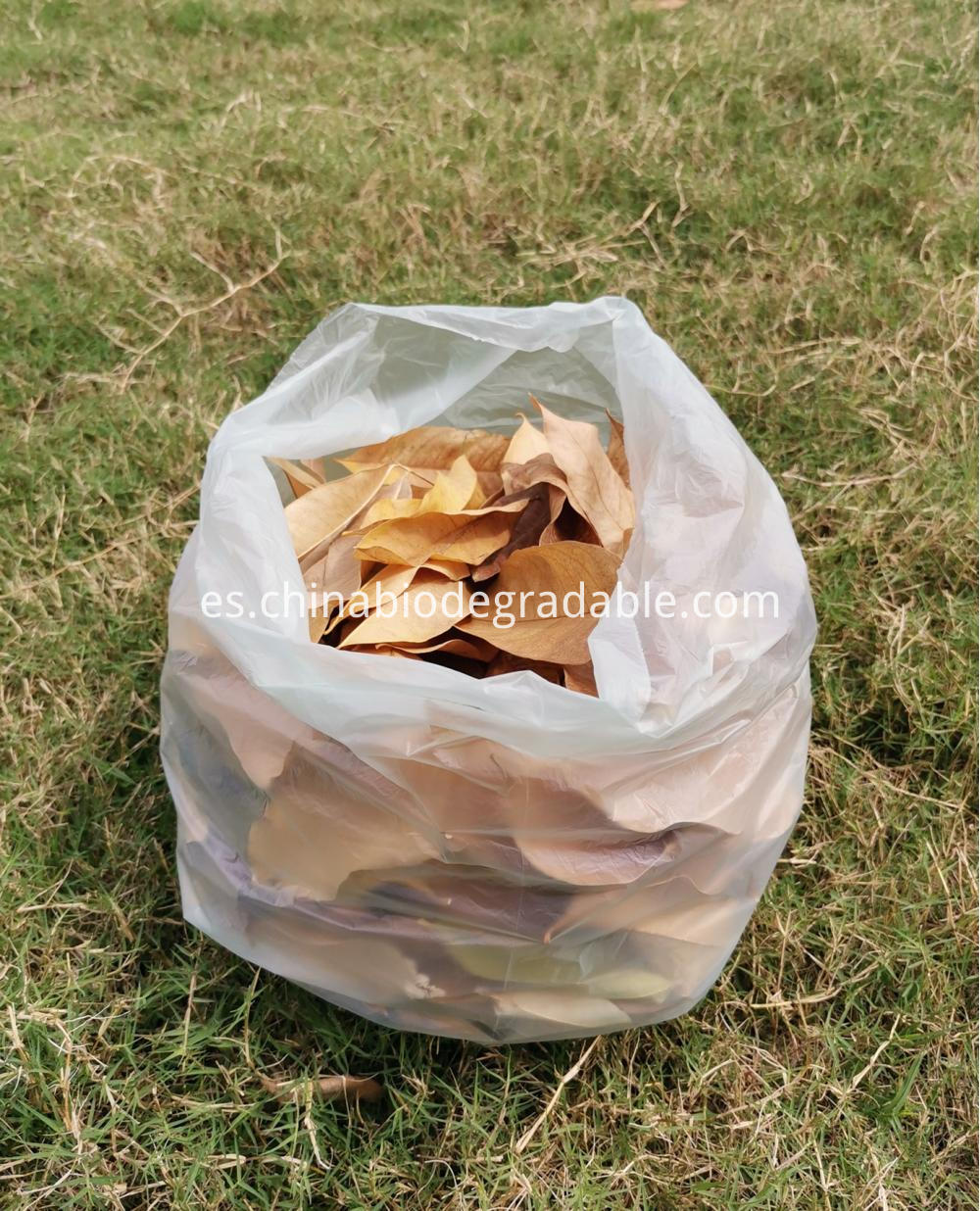 ASTM D6400 Biodegradable Garden Yard Waste Bags