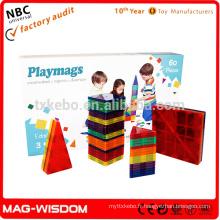 Playmags New Magnetic Building Tile 3D Toys 60pcs Sets