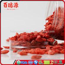 Benefícios de saúde de goji bagas naturais puros onde posso comprar goji berries goji pianta