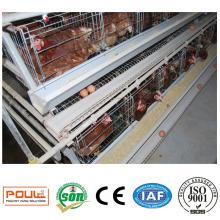 Gewerblicher Geflügel-Ei-Schicht-Käfig-Huhn-Batterie-Korb