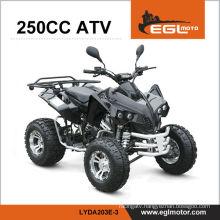 250cc motor ATV