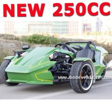 2015 NEW china 250cc trike original kit with conversion (MC-369)