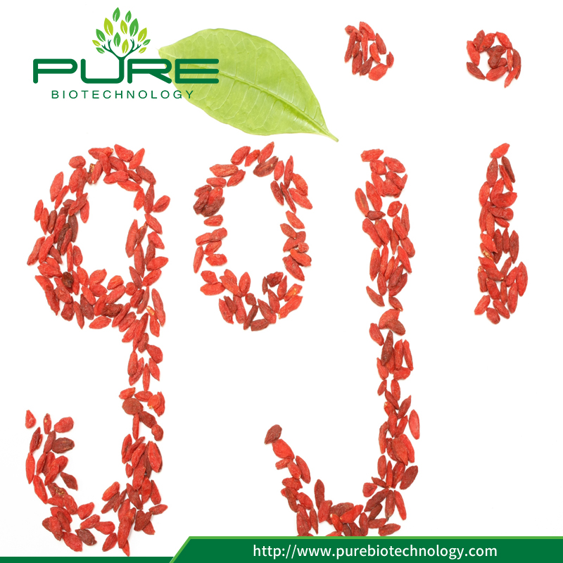Sun Dried Goji Berries