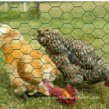 Chicken Mesh Hexagonal Mesh