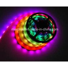 DC12V 30LEDs/M Ws2811 Digital LED Strip Light