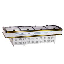 Schiebe-Glas-Tür-Fisch-Gefrierschrank ausgerüstet mit Spitzenmarken-Kompressor