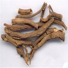 Siberian Ginseng root
