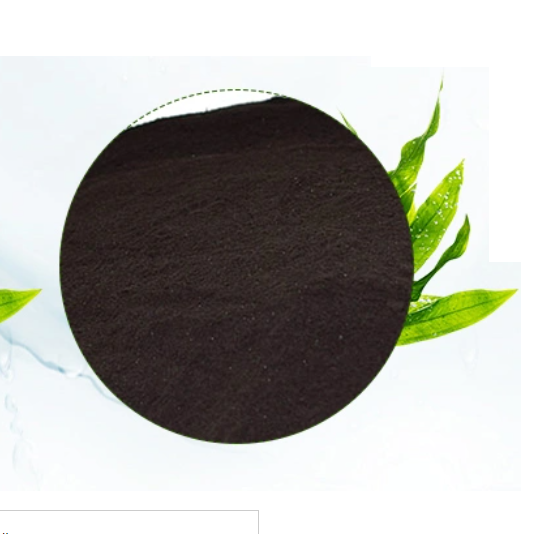 Seaweed Extract 2 Png