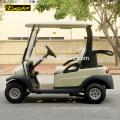 Carrinho de golfe elétrico barato de 2 seater para o carro da venda