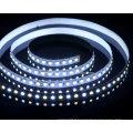 Température de couleur réglable 5050 Blue Strip Light LED