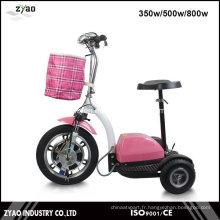 Scooter électrique pour personnes âgées 3 roues Grande taille