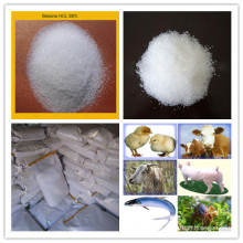 Betaine HCl for Feed Ingredient